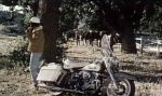 The Nasty Rabbit:1963 Harley-Davidson FL 1200 Duo Glide